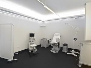 Gynäkologie,  gynecology